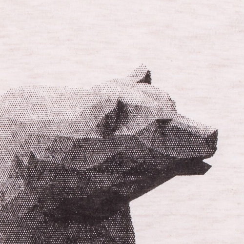 screenprinted polygon bear